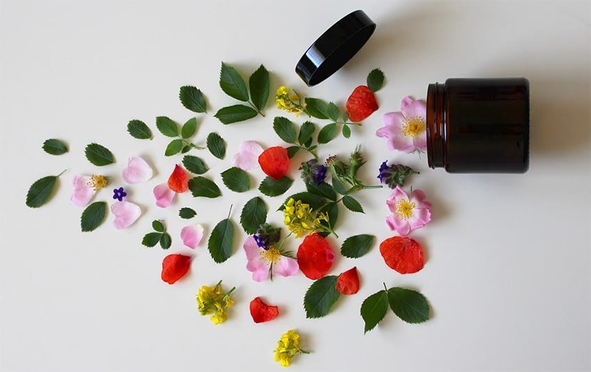Abandonner les médicaments au profit des plantes ?
