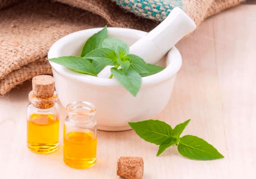 The medicines origins